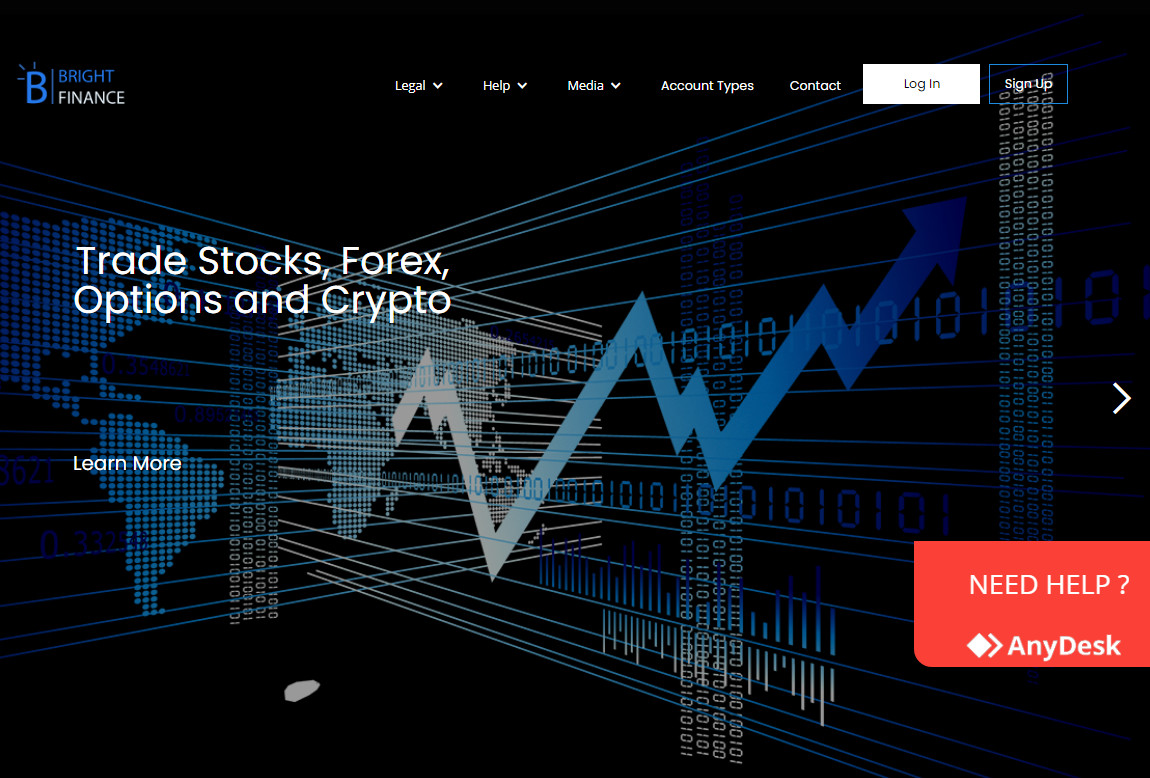Bright Finance: página web
